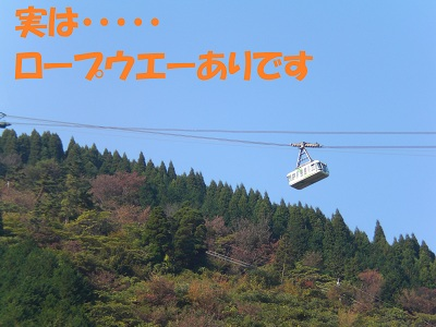 CIMG6230.jpg