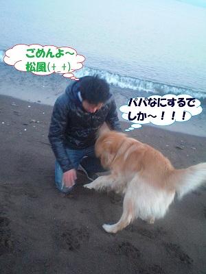 CIMG7367.jpg