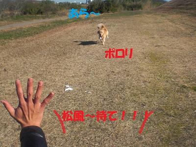 CIMG7552.jpg