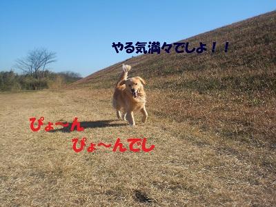 CIMG7559.jpg