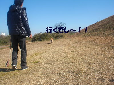 CIMG7563.jpg