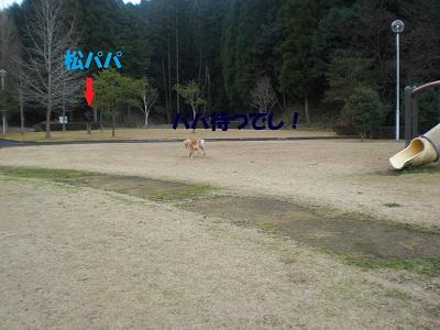 CIMG7669.jpg
