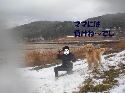 CIMG8148.jpg