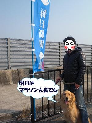 CIMG8277.jpg