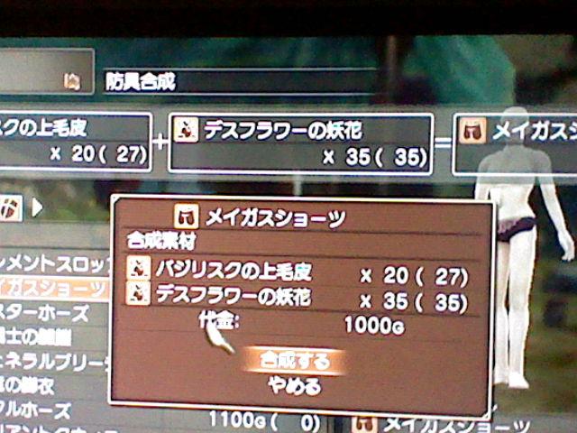 HNI_0012_20110829051500.jpg