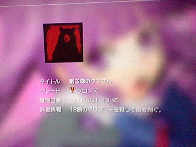 HNI_0084_20110621195131.jpg