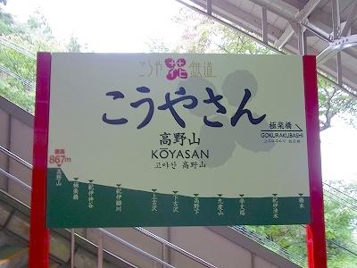 201010021019419.jpg