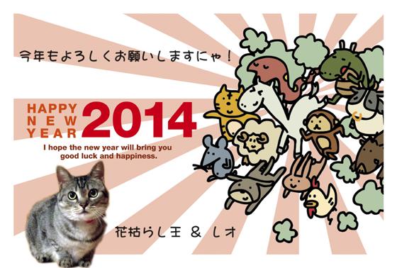 2014hanaleo.jpg