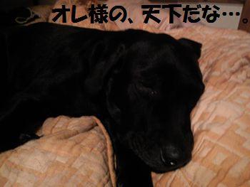 110216_blogjun.jpg