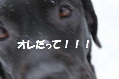 blog_110207jun1