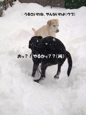 ウブ&純_Ⅰ