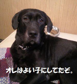 blog_110125jun3.jpg