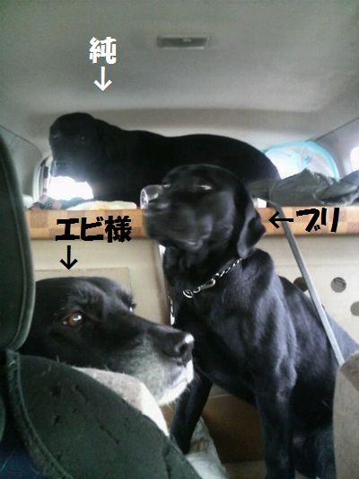 blog_110201junjun.jpg