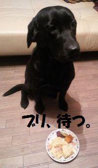blog_110206buri2.jpg
