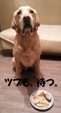 blog_110206tsubu1.jpg