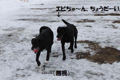 blog_110207biriebi1.jpg