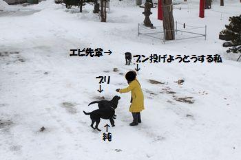 blog_110207full1.jpg