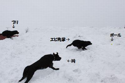 blog_110207full2.jpg