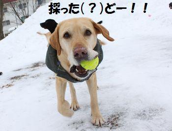 blog_110207tsubu1.jpg