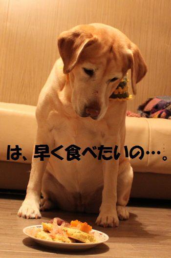blog_110209ubu2.jpg