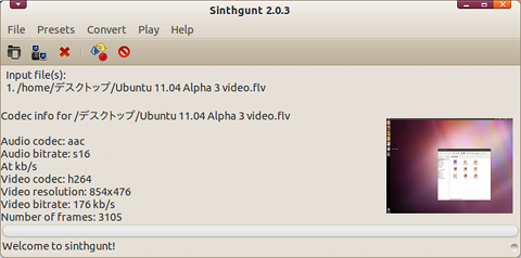 Sinthgunt Ubuntu 動画変換