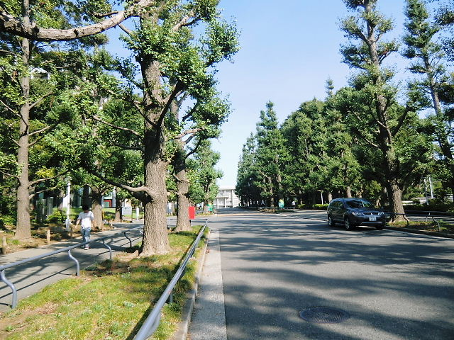 2010_0911_145551-CIMG0325.jpg