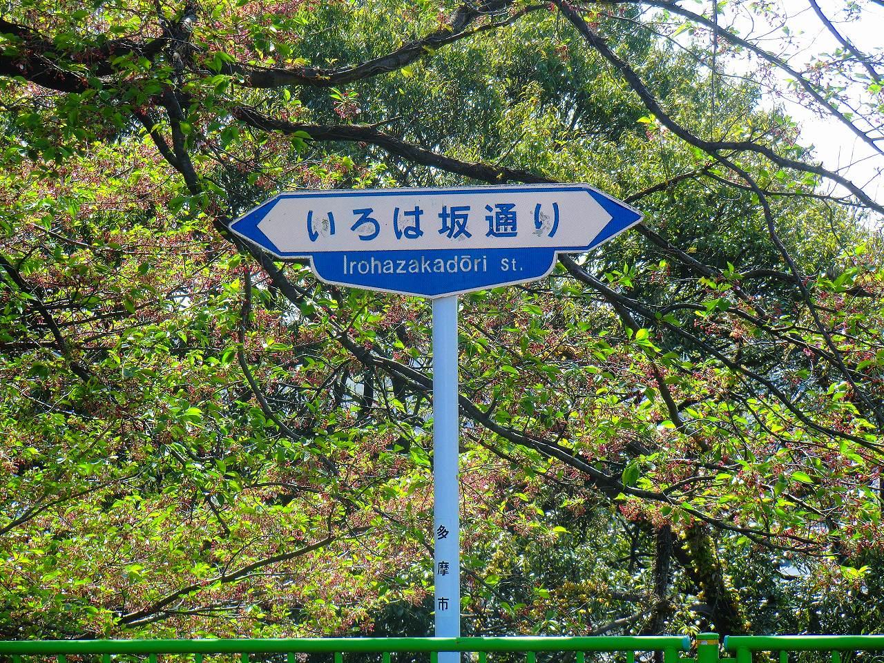 2012_0424_091819-CIMG1899.jpg