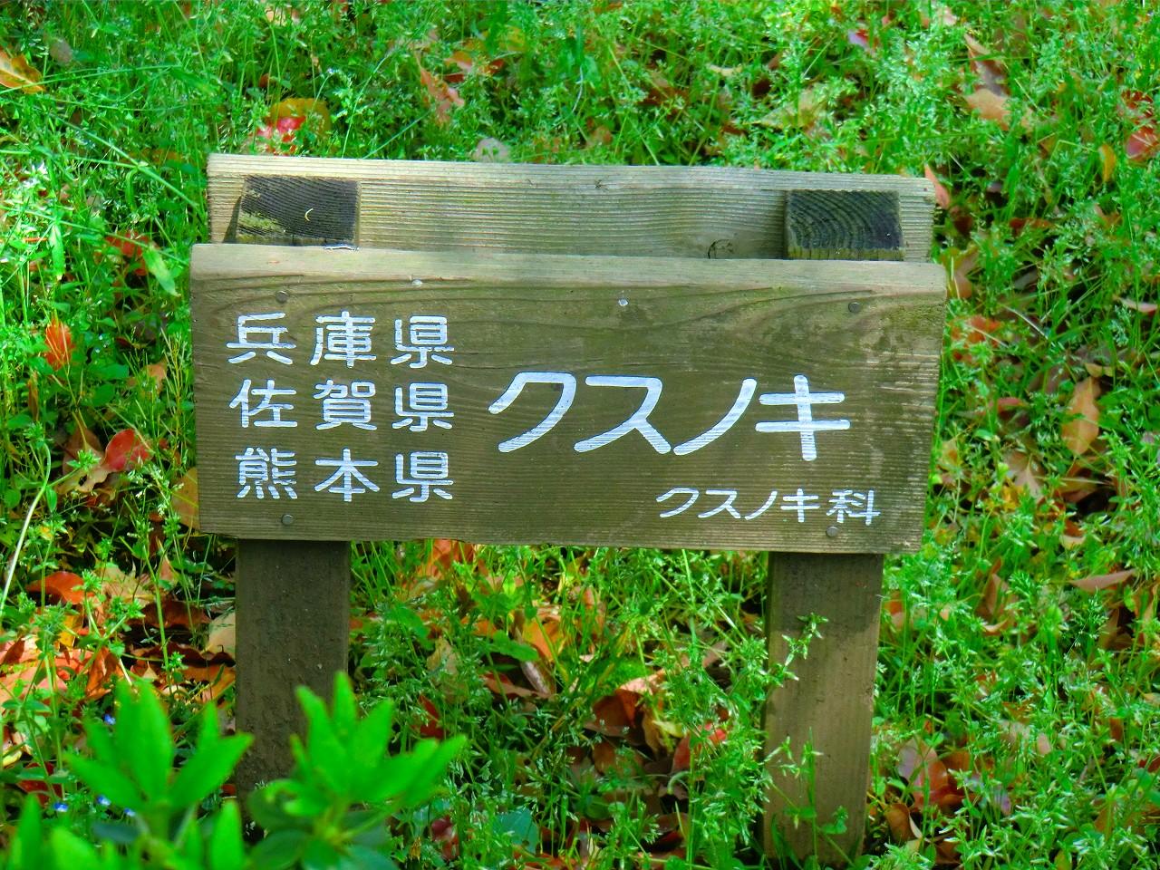 2012_0424_132401-CIMG1956.jpg