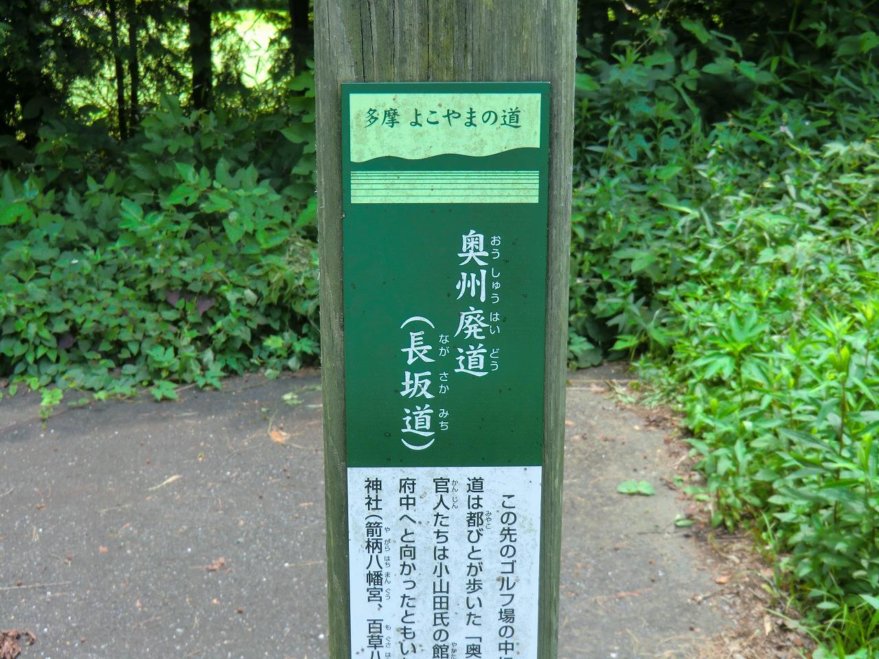 2012_0710_114837-CIMG2293.jpg
