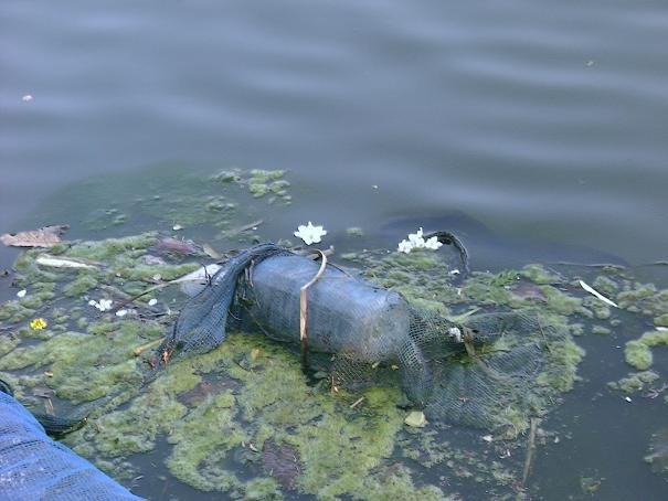 皆さん、ゴミはポイ捨てをせずにちゃんと規定の場所で捨てましょう。