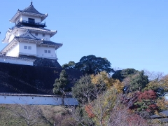 kakegawa3.jpg
