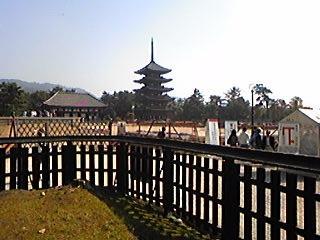 興福寺091028