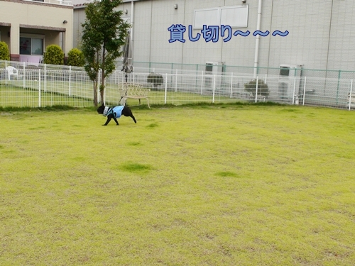 01_20120702111934.jpg