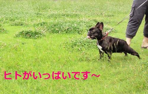 20110627_4.jpg