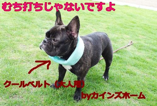 20110630_2.jpg