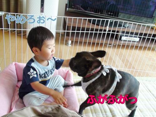 20110714_11.jpg