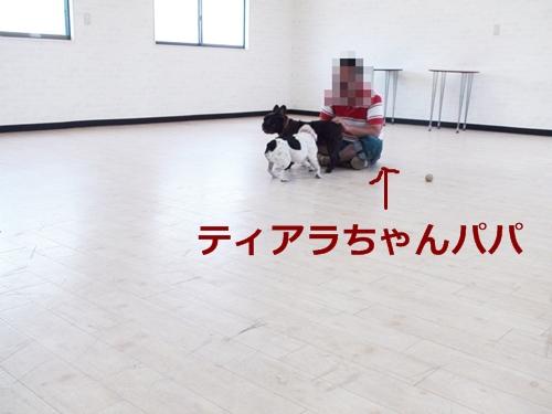 20110718_7.jpg