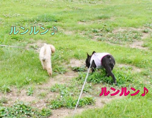 20110724_8.jpg