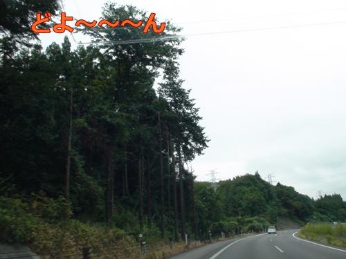 20110919_17.jpg
