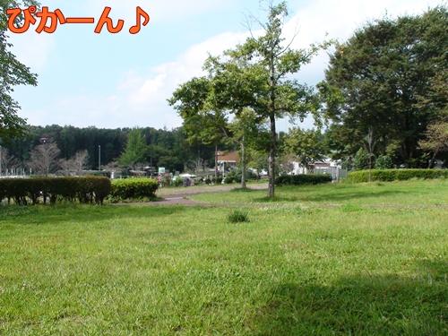 20110919_9.jpg