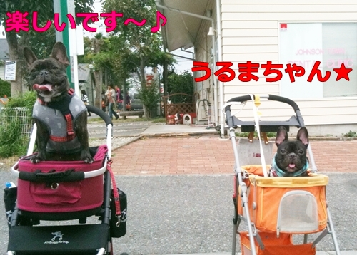 20111002_1.jpg