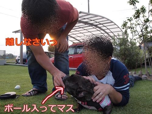 20111012_2.jpg