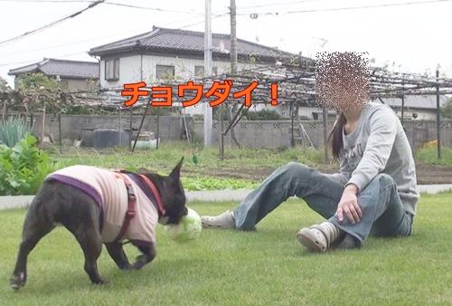 20111021_10.jpg