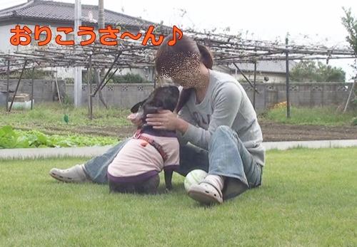 20111021_11.jpg
