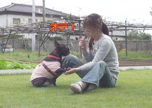 20111021_7.jpg