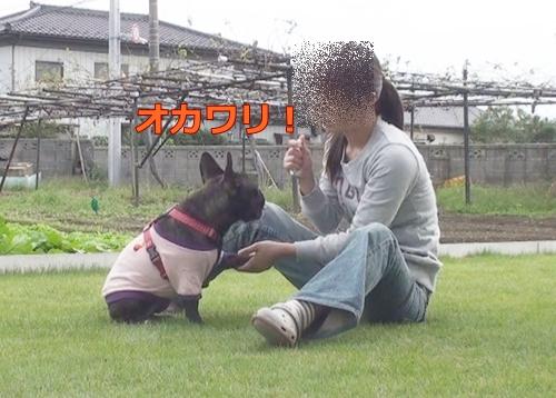 20111021_8.jpg