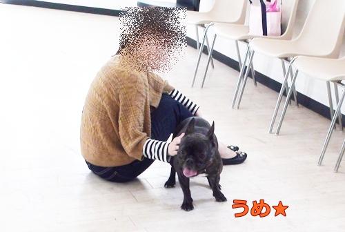 20111109_1.jpg