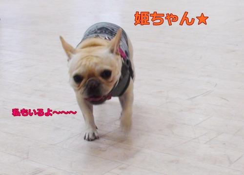 20111109_13.jpg