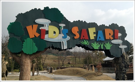 akiyoshi-safari001.jpg