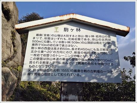 komagabayashi012.jpg